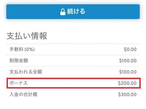 ワンダリーノ 入金 VISA3